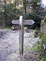 Signpost close to Rough Hows - geograph.org.uk - 1717448.jpg