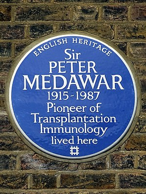 Peter Medawar - Blue plaque erected on 14 July 2014 by English Heritage at 25 Downshire Hill, Hampstead
