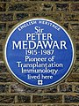 Sir PETER MEDAWAR 1915 - 1987 Pioneer of Transplantation Immunology lived here.jpg