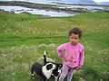 Skaleyjar-barn-hundur.jpg