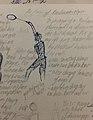 Sketch of Badminton Player Post Clear.jpg