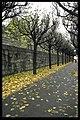 Skogskyrkogården - KMB - 16000300018385.jpg