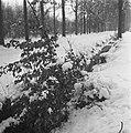 Sneeuw rond de Moerdijk, Bestanddeelnr 901-5454.jpg