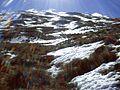 Snowy Slope (6580996311).jpg