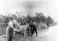 Soldaten bei Ausbesserungsarbeiten an einer Strasse - CH-BAR - 3238641.tif