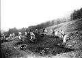 Soldaten räumen Steine und Wurzeln aus einem gerodeten Waldstück - CH-BAR - 3241218.tif