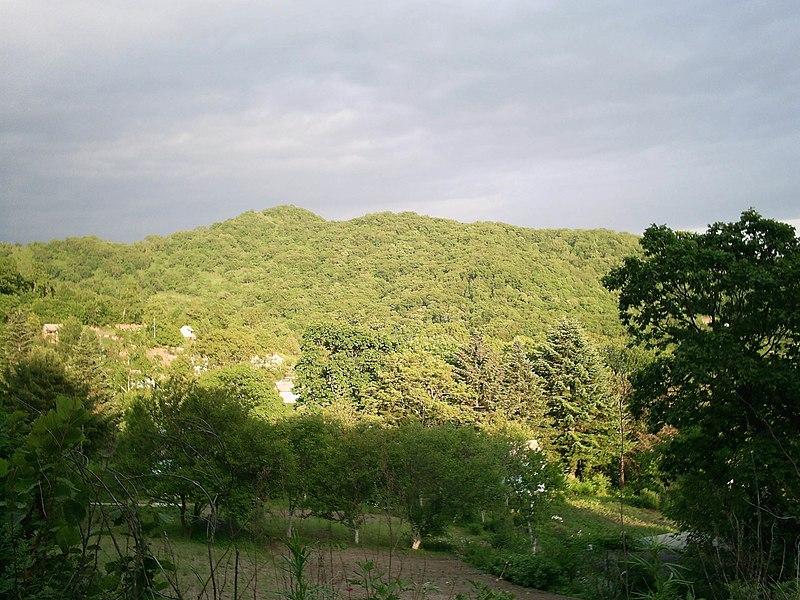 File:Sopka in south Sikhote-Alin.JPG