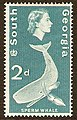 South Georgia 1963-2d.jpg