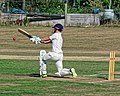 Southwater CC v. Chichester Priory Park CC at Southwater, West Sussex, England 043.jpg