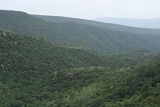 Sri Venkateswara National Park - Image: Sri Venkateswara National Park Tirumala Hills 01