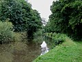Staffordshire and Worcestershire Canal south of Acton Trussell - geograph.org.uk - 1189769.jpg
