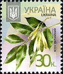 Stamp 2012 Jasen zvychajnyj.jpeg