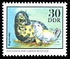 Stamps of Germany (DDR) 1975, MiNr 2035.jpg