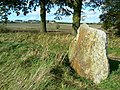 Standing stone near the road to Broad Town - geograph.org.uk - 1016308.jpg
