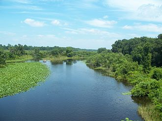 Ocklawaha River - Looking north on CR 42