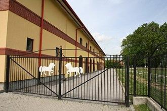 Đakovo - Lipizzan horse farm in Ivandvor