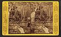 Steamer Osceola, Oklawaha River, Fla, from Robert N. Dennis collection of stereoscopic views.jpg
