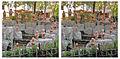 Stereo Photo-Cross see,Rokkakudou 立体写真-交差法、六角堂 - panoramio.jpg