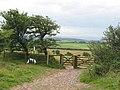 Stile above Tynings Farm - geograph.org.uk - 91532.jpg