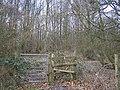 Stile beside gate into Wessells Wood - geograph.org.uk - 1178015.jpg