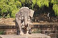 Stone elephant at Konark Sun Temple.jpg