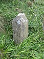 Stone marker near Hartland Point - geograph.org.uk - 1333889.jpg