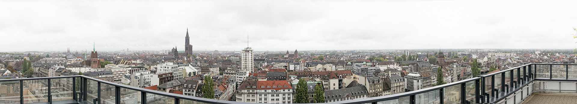 Strasbourg seen from Esca Tower in 2014.jpg