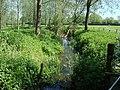 Stream on the edge of King's Marsh - geograph.org.uk - 796866.jpg