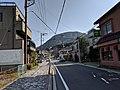 Street view along Route 723 in Hakone.jpg