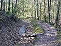 Stromberg-Schwäbischer Wald-Weg HW 10, Der Weg führt von Pforzheim über Besigheim und Backnang nach Lorch und hier über die waldreichen und einsamen Keuperhöhen des Stromberges. - panoramio (1).jpg