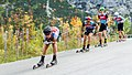 Summer Grand Prix Competition Planica 2017 2017 10 01 9519.jpg
