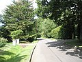 Summer in Long Copse Lane - geograph.org.uk - 1426436.jpg