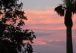Sunset Brisbane (31133519751).jpg