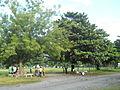Surallah South Cotabato 13.jpg