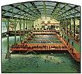 Sutro Baths interior, circa 1900.jpg