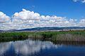 Tablas de Daimiel - panoramio.jpg