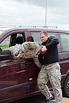 Tactical Combatives Courses level II in Chievres Air Base 150224-A-RX599-025.jpg