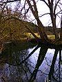 The River Würm - panoramio.jpg