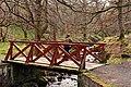 The Wee Bridge - geograph.org.uk - 1271480.jpg