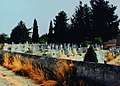 The cementery in Gennadion - panoramio.jpg