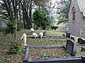 The graveyard of the Church of St Thomas - geograph.org.uk - 593237.jpg