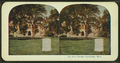 The law library, Cambridge, Mass, from Robert N. Dennis collection of stereoscopic views 4.png