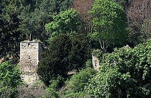 Blanerne Castle - Ruins of Blanerne Castle