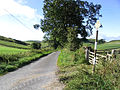 The road to Whitchesters - geograph.org.uk - 548535.jpg