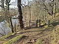 Thornton Wood - geograph.org.uk - 787734.jpg