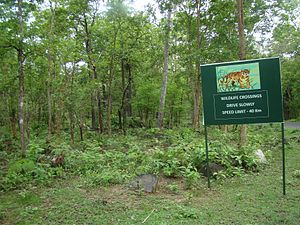 Angul district - Tikarpada Tiger Reserve