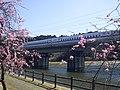 Tokaido Shinkansen Tsudura-ike Bridge 01.jpg