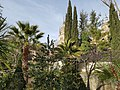 """Torres de la Catedral Nueva desde el """"jardín romántico mediterráneo"""".jpg"""