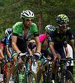 Tour de France 2014, ten dam (14846730936).jpg