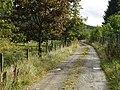 Track, Kiddamhill - geograph.org.uk - 567966.jpg